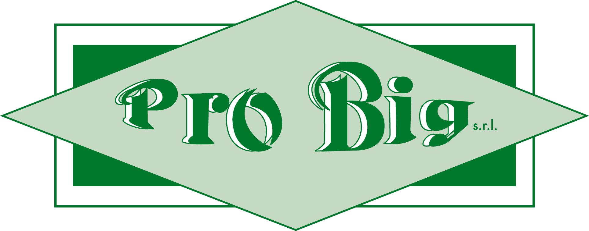 Pro_big